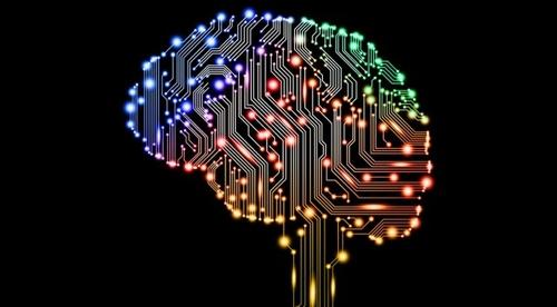 Data Management or AI?- prioritising investment