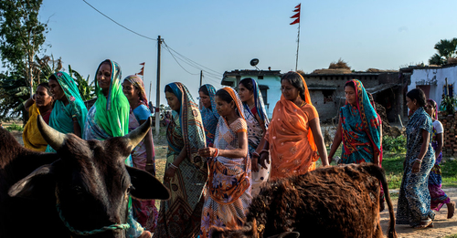 India's Missing Girls Problem Entrenches Demographic Risks
