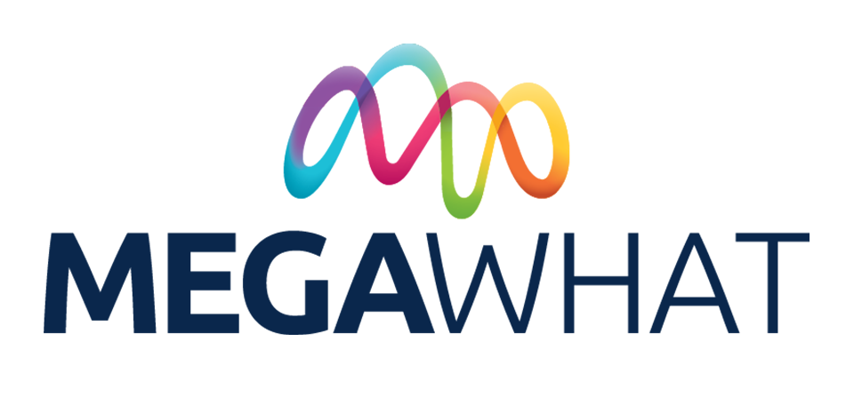 MegaWhat