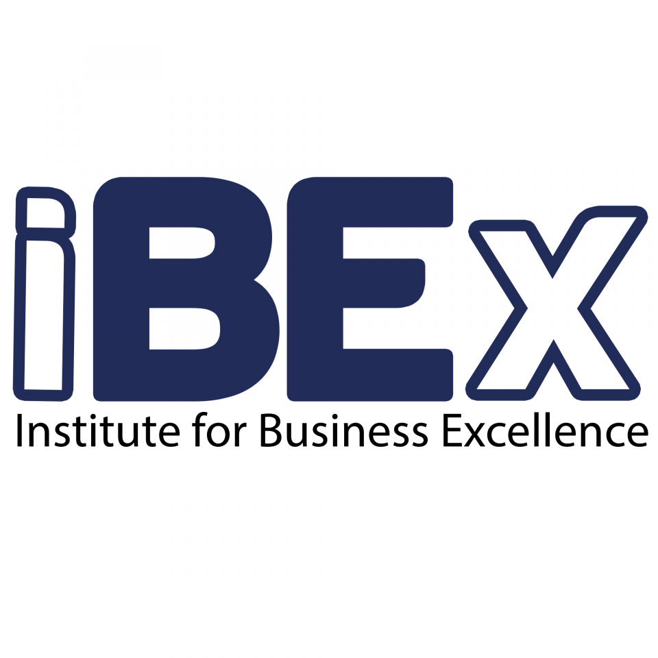 Institute for Business Excellence