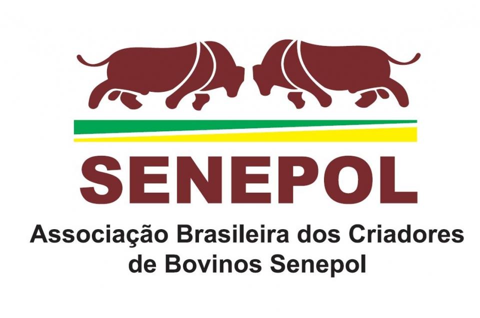 Senepol