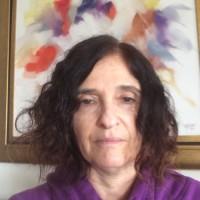 Vivian Fischer, Universidade Federal do Rio Grande do Sul