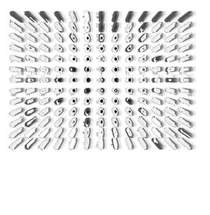 Lightsymposium