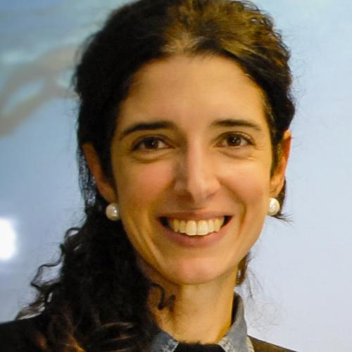 Maria Ines Rimondi, Consultora Independente