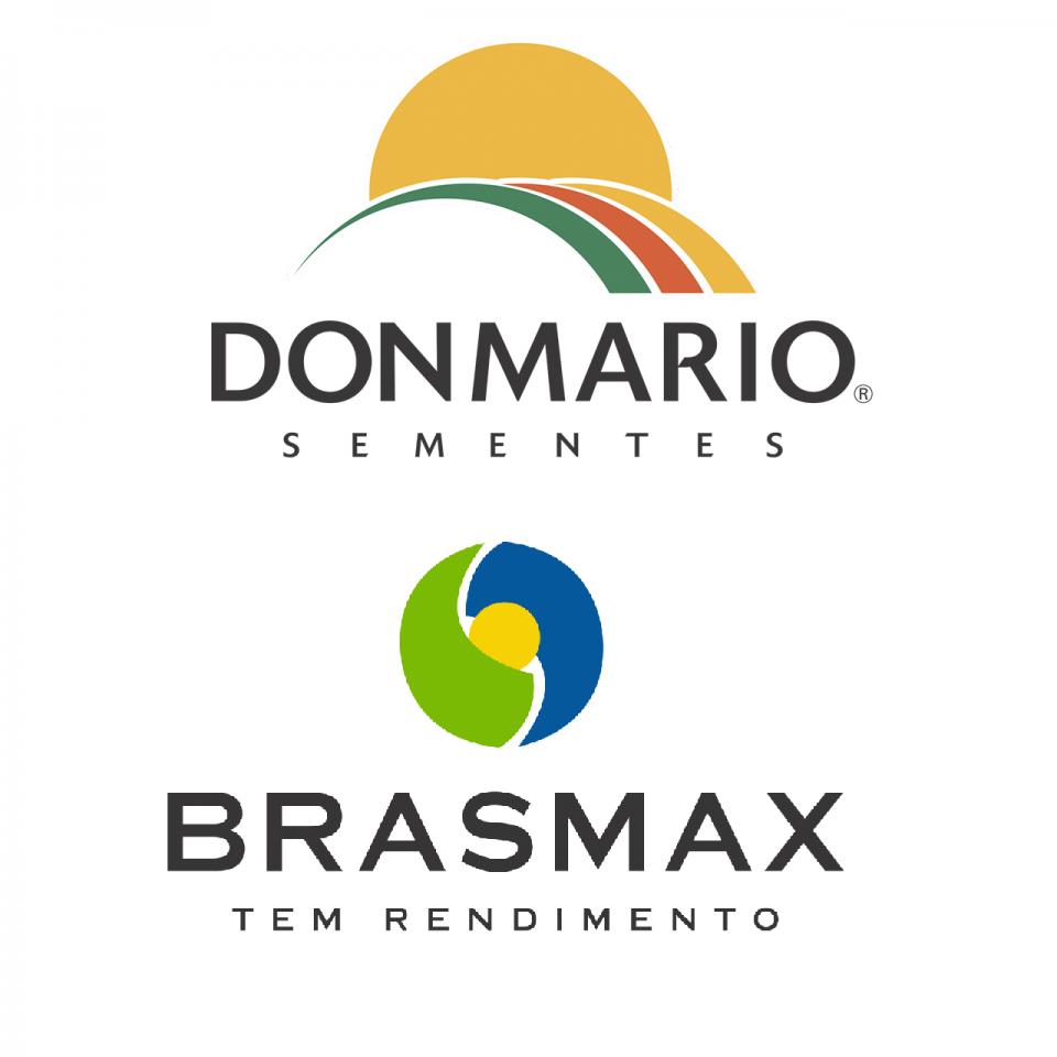 DONMARIO / BRASMAX