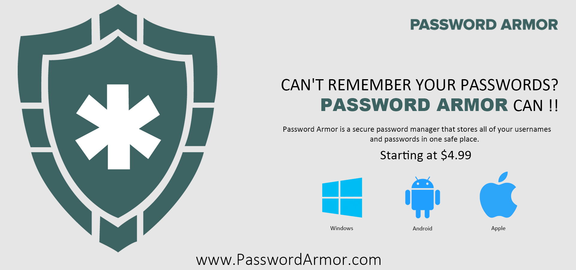Why do you need a Password Manager like Password Armor?