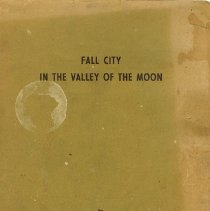 Image of In the Valley of the Moon Book