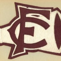 Image of 2009-004.004 - Fall City Cheerleader Patch