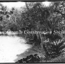 Image of 10.0063R - San Antonio River at Brackenridge Park