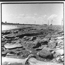 Image of P1984.066 - Beavertail Rd