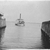 Image of P1986.032 - Beavertail  B