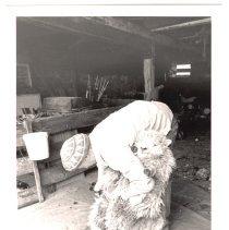 Image of P2014.004.006 - Sheep Shearing
