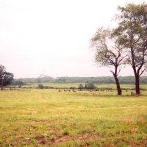 Image of P2015.009.003 - Windmill, Summer 2006