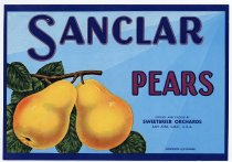 Image of Sweetbriar Orchards, Pears