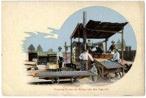 Image of Preparing Prunes for Drying, near San Jose, Cal.