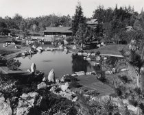 Image of Japanese Friendship Gardens, San Jose, CA