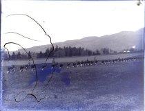 Image of 2012-61 - James B. Long Glass Plate Negatives