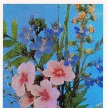 Image of 2013.120.465b - Postcard