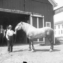 Image of FW_13230 - Man and Horse Posing in Front of Livery Stable