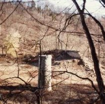 Image of Cove Spring - 2003.13.1