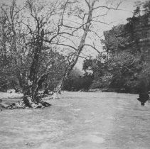 Image of Lover's Leap on Elkhorn Creek - 2003.49.5