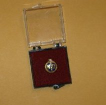 Image of 30 year service pin, National Distillerys - Pin, Occupational