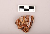 Image of 12.0132 - Ceramic sherd