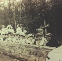 Image of Outdoor party, ca. 1910 -