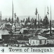 Image of South End of Issaquah, 1890 -