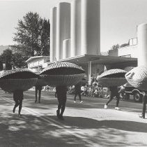Image of Salmon Days: Clam Shells - Issaquah Press Collection
