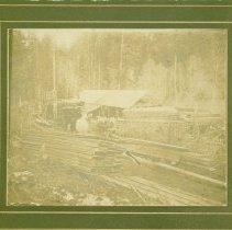 Image of C. J. Trandum's Lumber Mill Near Pine Lake, 1901 -