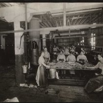 Image of Women making sausage in T.M. Sinclair plant, 1912.