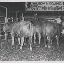 Image of National Beef Show in Cedar Rapids, IA with Wilson & Co. signage.