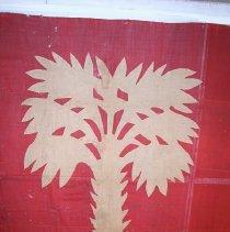 Image of center--palmetto