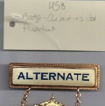 Image of 485 A.B. Cummins campaign badge with ribbon 1916