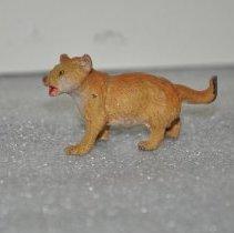 Image of 248.87.3 lion cub