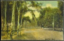 Image of 3570.807 Postcard
