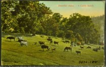 Image of 3570.134 Postcard