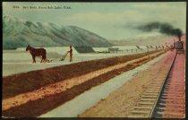 Image of 3570.456 Postcard