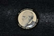 Image of 1195.14 Political button
