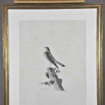 Image of Print - Le Petit Caporal