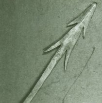 Image of Spear