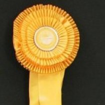 Image of Ribbon, Prize