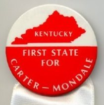 Image of Pin, Political