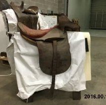 Image of Sidesaddle