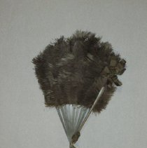 Image of Fan - Folding feather fan