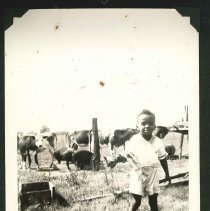 Image of Print, Photographic - Unidentified African American Child
