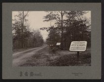 Image of Print, Photographic - Roadside Markers at Shiloh Battlefield