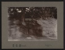 Image of Print, Photographic - Shiloh Spring