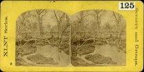 Image of Stereograph - XLNT Series. Scenery and Groups. San Pedro Springs, San Antonio, Texas
